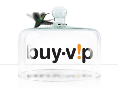 buyvip_inversion